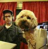 Dog-Gone Miscommunication Leads To Great Civic Club Presentation